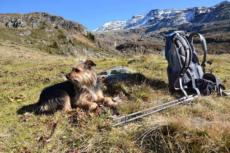 #Summer #adventure is just starting.Get outside this season with new #Hiking #backpack
