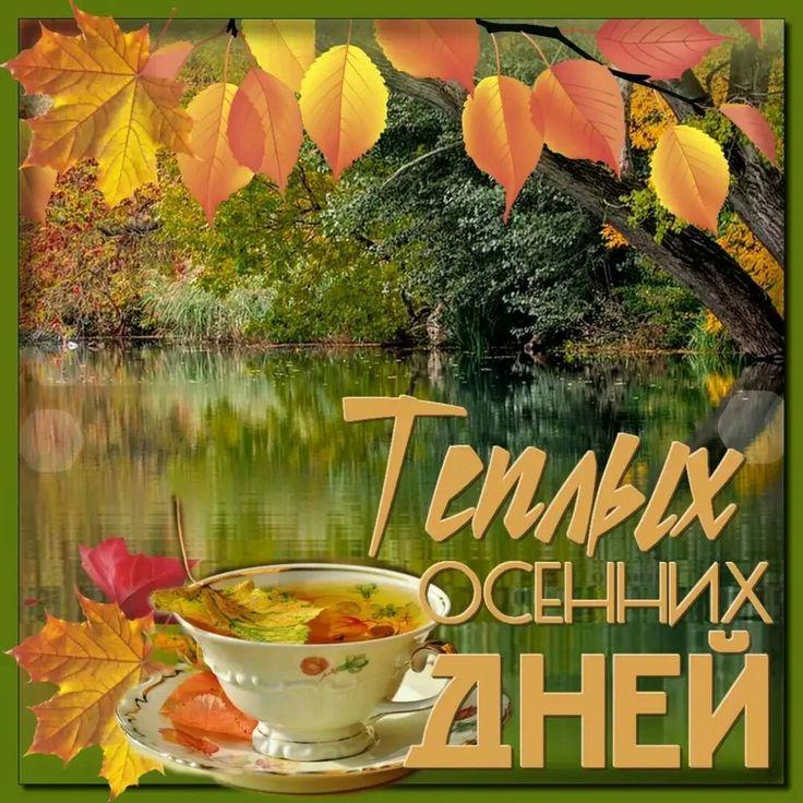 хорошего воскресного осеннего дня картинки