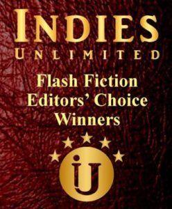 Flash Fiction Editors' Choice Winners for November & December 2017