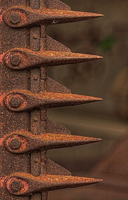 rusty spikes by MsLIsa