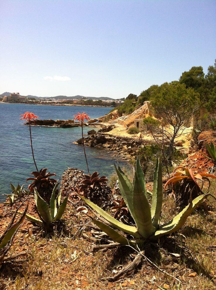 Coastal walk, Santa Eulalia - Ibiza