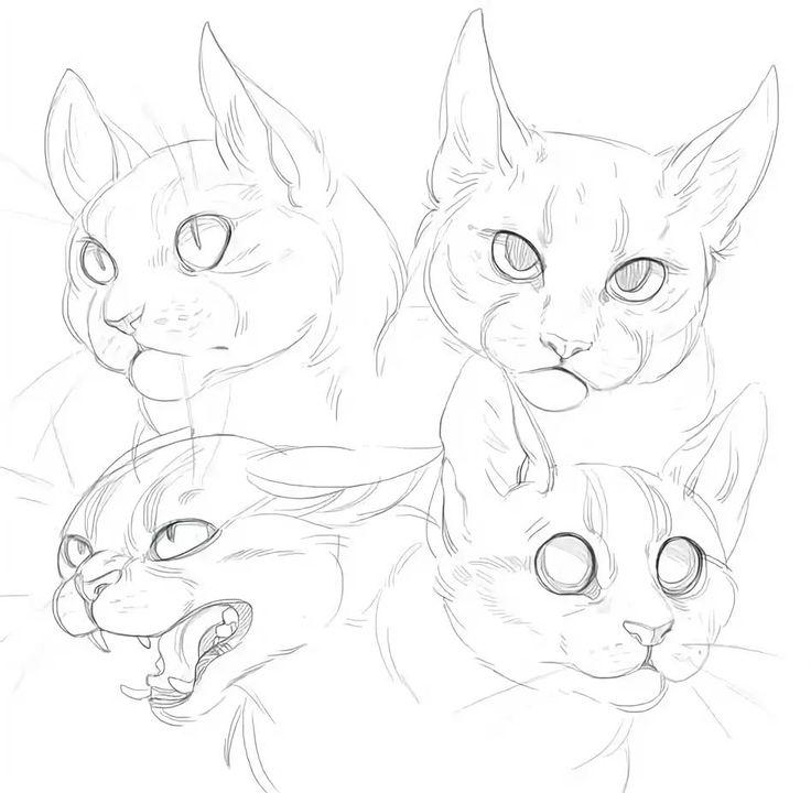 картинки туториалы коты топазом бриллиантами