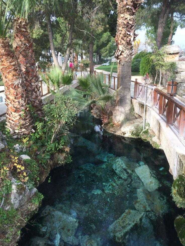 Ancient Pool Hierapolis Pamukkale Turkey dö