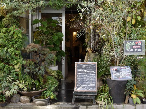 hanging greenery for outdoor patio 風花 kaza hana cafe japan