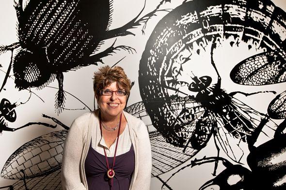 Regina Silveira Uma das artistas brasileiras contemporâneas de maior renome internacional, Regina Silveira faz instalações, objetos e obras bidimensionais.