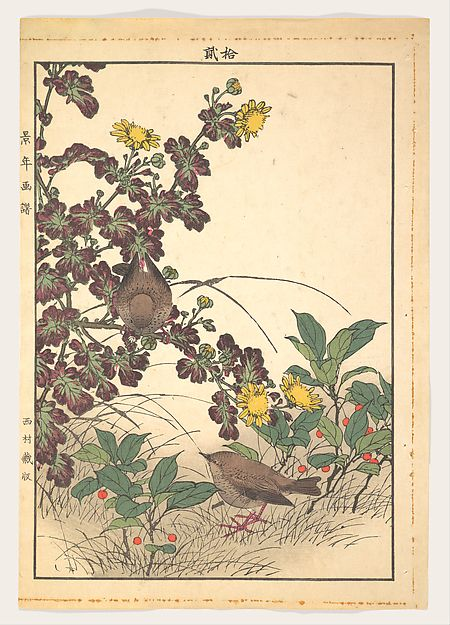Imao Keinen (Japanese, 1845–1924). Keinen kachō gafu 景年花鳥畫譜 Two Birds and Crysanthemums, from Keinen kachō gafu (Keinen's Flower-and-Bird Painting Manual), 1891. The Metropolitan Museum of Art, New York. Bequest of Grace M. Pugh, 1985 (JP3702)