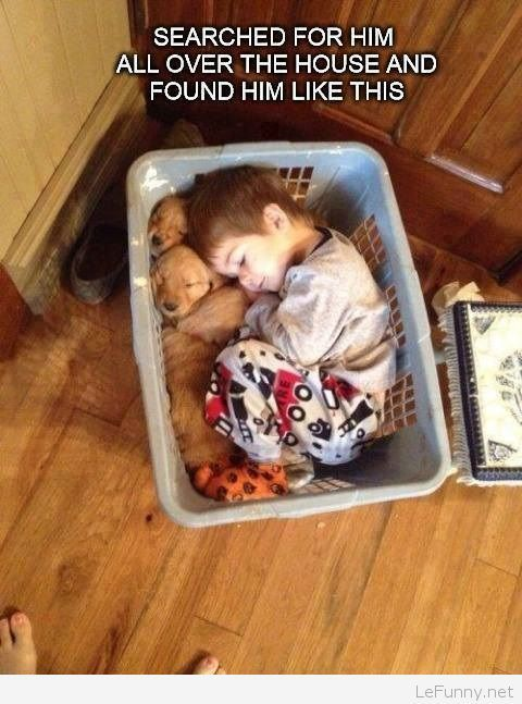 Funny kid sleeping with the puppies LeFunny.net