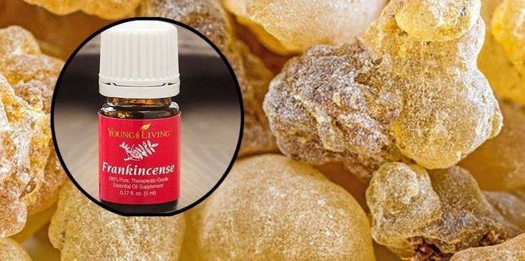 Frankincense Essential Oil Suppresses Multiple Cancers: Previous research has shown the essential oils of both frankincense and myrrh to potently suppress growth of human breast cancer, lung cancer, cervical cancer, liver cancer and skin cancer cells. But in this new study, further refined extracts of frankincense essential oils were found to be much more potent, …
