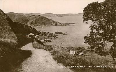 Overton Park and the view of Karaka Bay