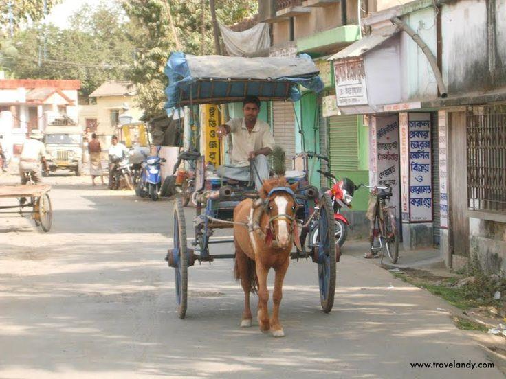 Tanga, the best way to go around in Murshidabad