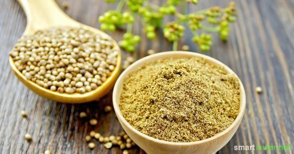 Mehr als ein exotisches Gewürz! Der Genuss von Koriander wirkt entgiftend und hilft unter anderem bei Diabetes, Verdauungsproblemen, Rheuma usw.!