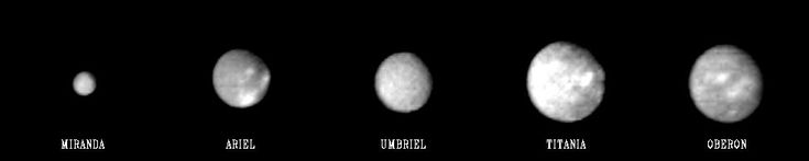 """This """"family portrait"""" of Uranus' five largest moons was compiled from images sent back Jan. 20, 1986, by the Voyager 2 spacecraft. The pictures were taken through a clear filter from distances of 5.0 million to 6.1 million kilometers (3.1 million to 3.8 million miles). In this comparison, we see the relative sizes and relativities of the satellites. From left, in order of increasing distance from the planet, they are Miranda, Ariel, Umbriel, Titania and Oberon."""