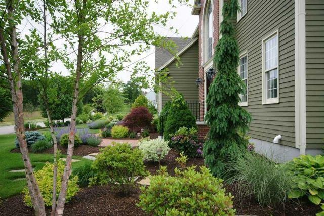 Best 25 foundation planting ideas on pinterest front for Foundation planting plans