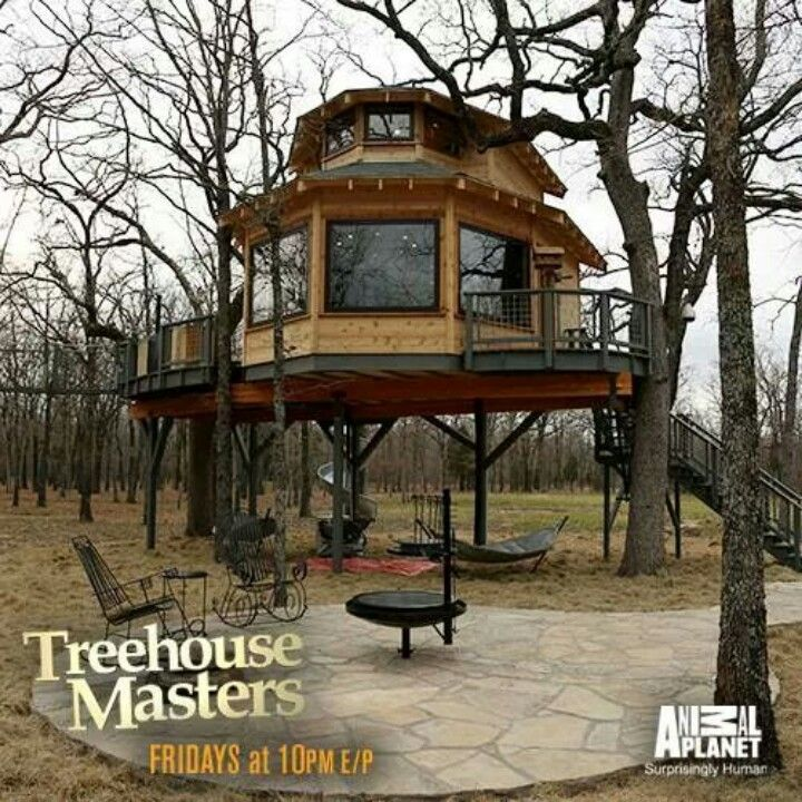 15 Best Images About Nice Tree Houses On Pinterest
