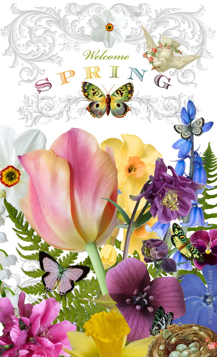 Spring is my favorite season. I hate the heat & don't like real cold either, & the flowers are so lovely then.