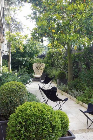 Lovely little garden in Paris | More photos http://petitlien.fr/appartementrdj I have the butterfly chairs!