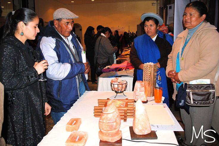 """Proyecto """"Artesanía en Roca"""", Producción y Comercialización de Lámparas y Artesanías de Sal Rosada."""