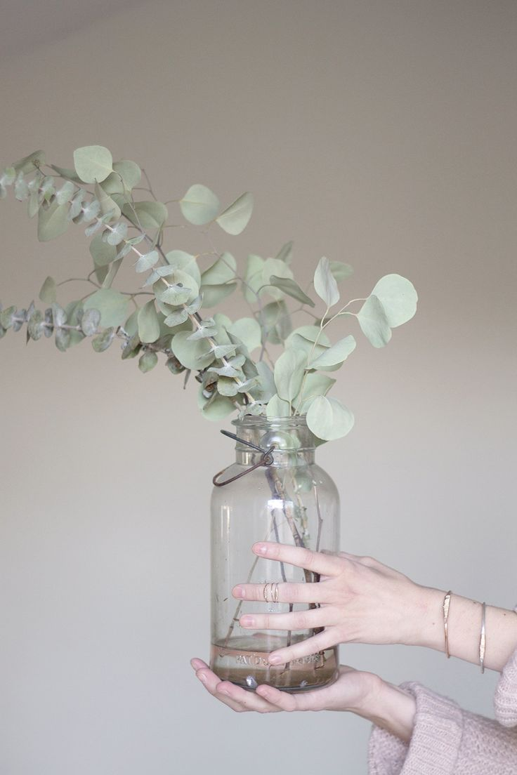 There's such a simple, effortless beauty in eucalyptus steams in a jar. Beautiful and elegant. // eucaliptus pinned by barefootstyling.com