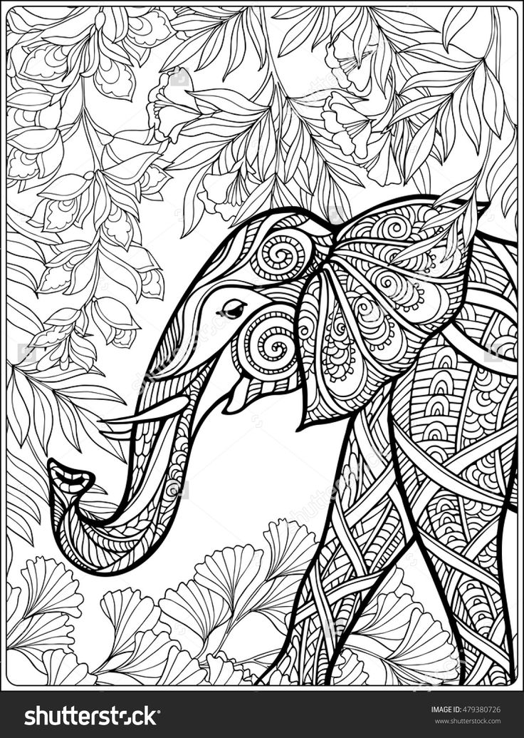 Elephant In Forest Coloring Book For Adults Shutterstock 479380726
