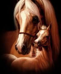 Imagen artística de una yegua y potro árabes de capa perla. Esta capa suele incluir manchas blancas en la cabeza o en las cañas (parte bajo la rodilla que acaba en el casco). Es una capa muy valorada y característica de algunas razas de ponies y caballo, como el Fiordo o el Selva Negra.