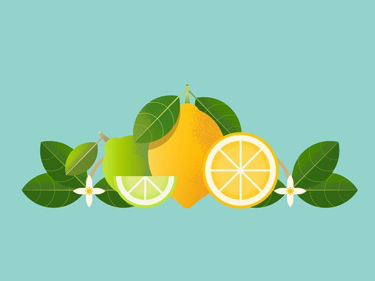 Lemons by Katharina Mirochna