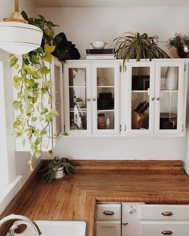 Absolutely love the shelving, plants and countertops! ☽☯☾magickbohemian #cottageshelves