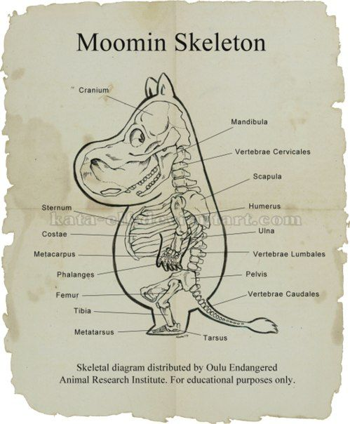 Moomin skeleton