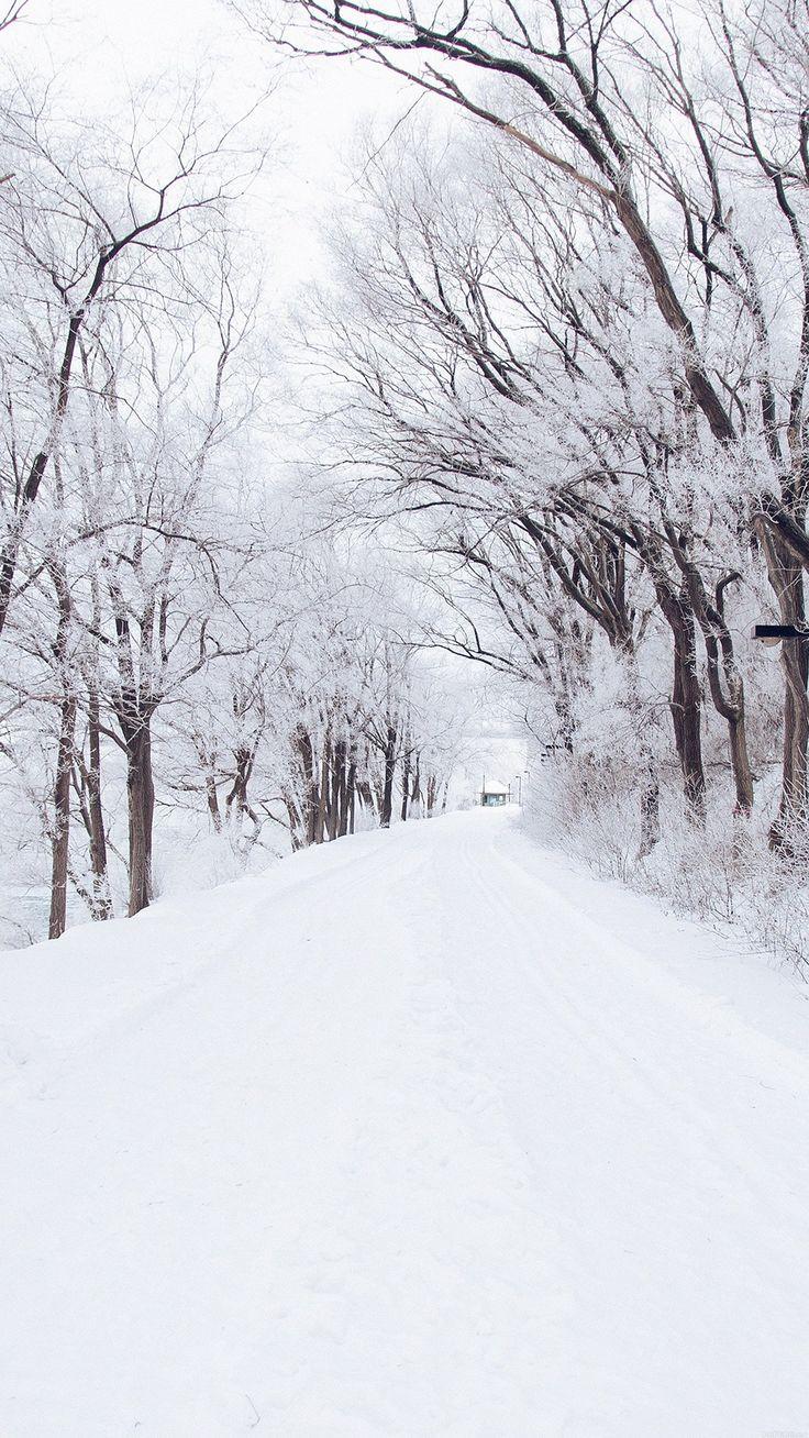Winter Road Romantic Nature Snow White #iPhone #6 #plus #wallpaper