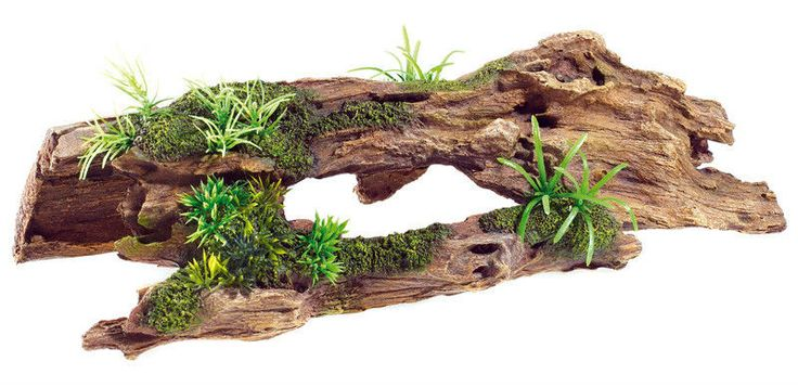 305 best images about aquariums decor rock wood on for Aquarium log decoration