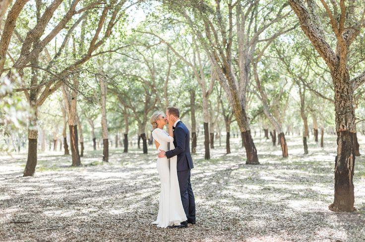 canberra wedding photography0028 National Arboretum Cork forest