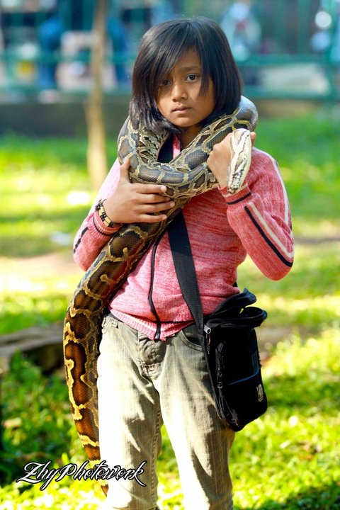 child and the big snake - Bandung - Indonesia