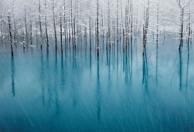 snow on a blue pond: Photos, Ponds, Kent Shiraishi, Winter, Nature, National Geographic, Place, Photography