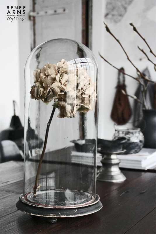Bell jar or glass domes: The taste of Petrol and Porcelain | Interior design, Vintage Sets and Unique Pieces www.petrolandporcelain.com Cloche en verre https://www.facebook.com/MADBYM?ref=tn_tnmn