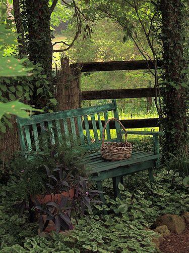 Perfect: Painted Bench, Yard, Quiet Place, Secret Garden, Garden Benches, Shade Garden, Outdoor, Gardens