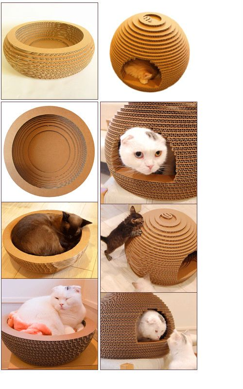 unique cat beds, make them from cardboard and the cats can use them as scratching pads