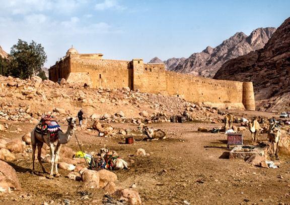 Camel Parking - Saint Catherine's Monastery - Mount Sinai - Egypt