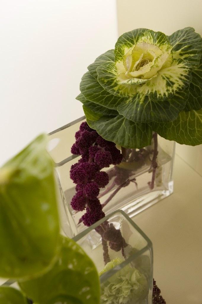 Oltre 25 fantastiche idee su fiori verdi su pinterest for Fiori verdi