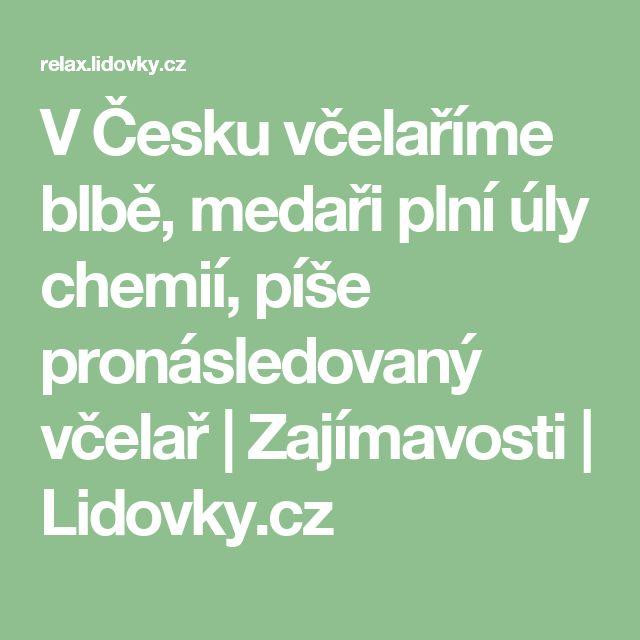 V Česku včelaříme blbě, medaři plní úly chemií, píše pronásledovaný včelař | Zajímavosti | Lidovky.cz