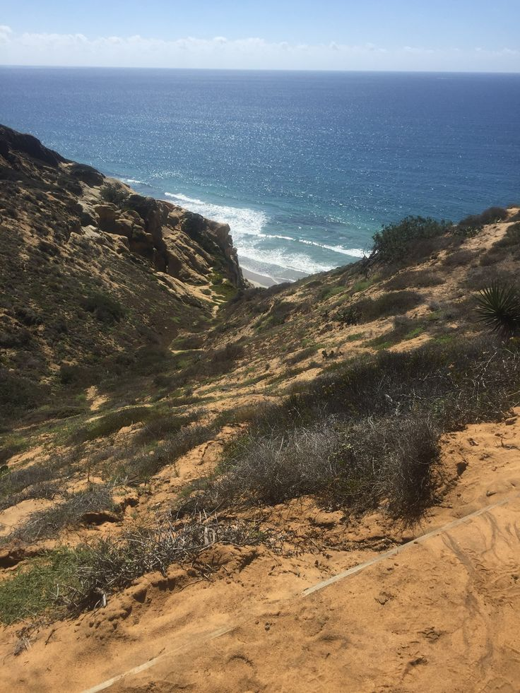 Leather Accent Tag - Torrey Pines Cliff by VIDA VIDA lpHfHr1bM