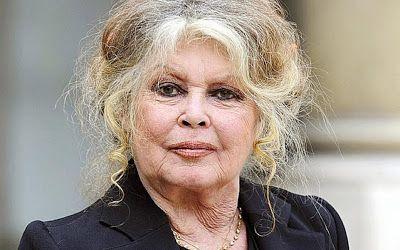 CIDADE: A atriz francesa Brigitte Bardot, 82, criticou a C...