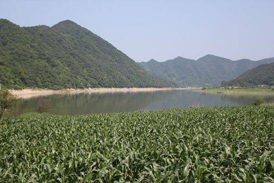 Dae-Cheong lake in Oc-Cheon, Korea