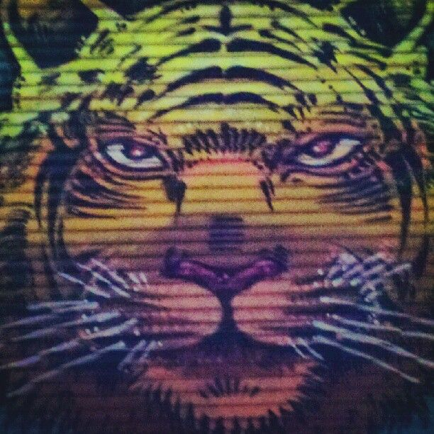 meow #streetart #art #graffiti #nyc #brooklyn #williamsburg #paint #tiger #cat #neon