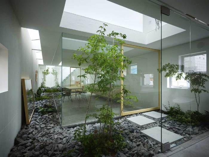 Застекленное помещение отлично подойдет для тропических растений зимнего сада.