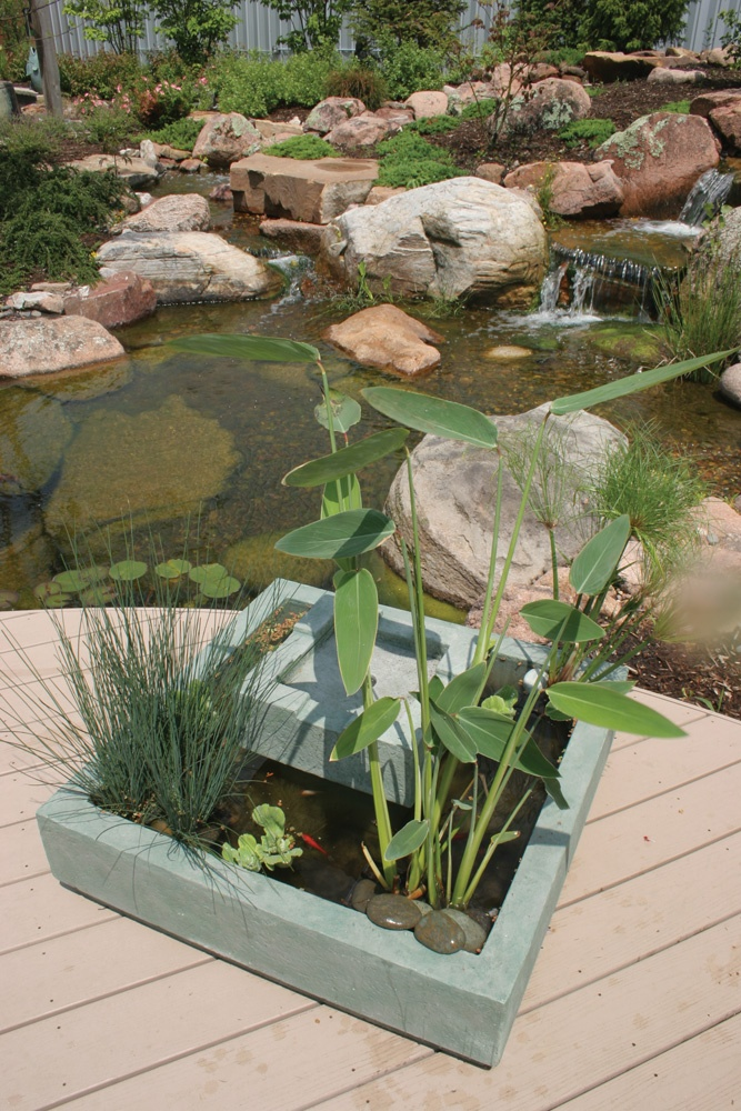 1000 images about deck pond on pinterest gardens lowes for Square fish pond