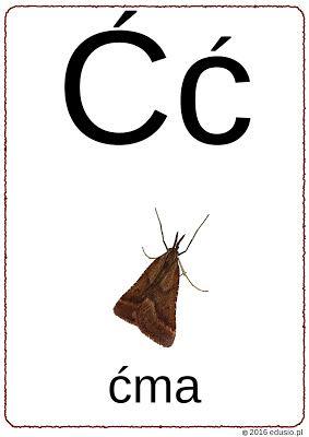polski alfabet dla dzieci
