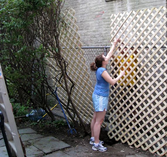 Cover a ugly/boring chain-linked fence with lattice and plant climbing plants to grow up it! Good idea :)