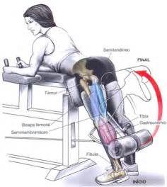 Pesquisa Como trabalhar os abdomens em pe. Vistas 11237.