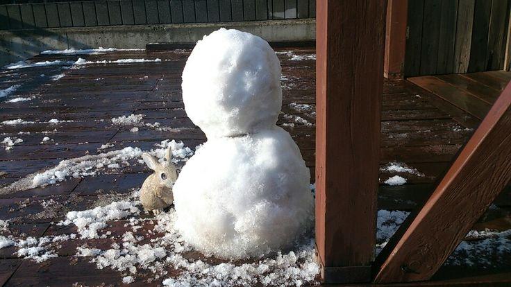 雪だるま2014in千葉