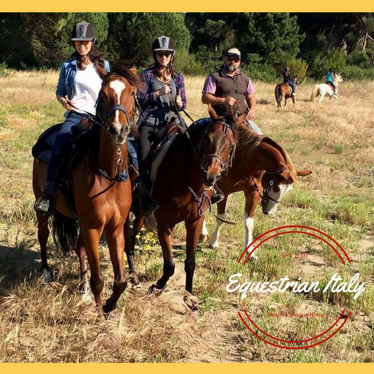 HORSE RIDING TRAILS & RANCH VACATIONS IN ITALY http://www.equestrianitaly.com Explore the Nature of Italy long horseback riding trails! Relax, fun and adventure in the countryside of Rome with a special friend!  Discover the beauty of #Italy, during your #holiday in Europe, riding in fashinating landscapes  with private tour, unique trekking, including hotel stays, great dinners, many outdoor activities, entrance at the SPA, book now your #riding #experience and be a cowboy with the italian…