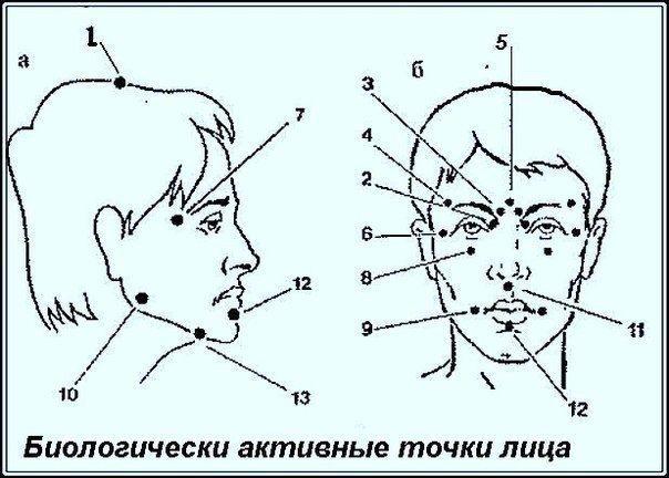 Биологически активные точки на голове - ваша скорая помощь